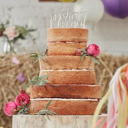cake-topper-holz-just-married