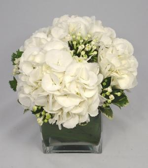 [Thumb - orig_hydrangea_bouvardia_wedding_table_pf22e.jpg]