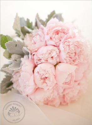 [Thumb - Pink_Peony_Wedding_Bouquet.jpg]